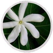 Tahitian Gardenia Round Beach Towel