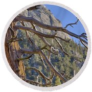 Tahquitz And The Pine Round Beach Towel