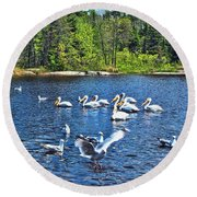 Taking Flight In Ontario Round Beach Towel