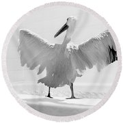 Taking The Plunge - Pelican - Bathroom Round Beach Towel