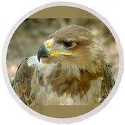 Tawny Eagle-11 Round Beach Towel