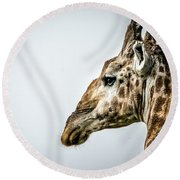 Tall And Vigilant Round Beach Towel
