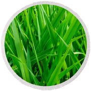 Tall Green Grass Round Beach Towel