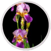 Tall Iris Round Beach Towel