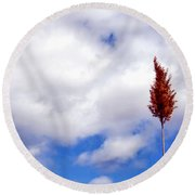 Tall Trunks Round Beach Towel