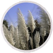 Tall Wispy Pampas Grass Round Beach Towel