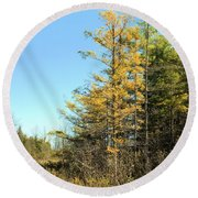 Tamarak Gold Round Beach Towel