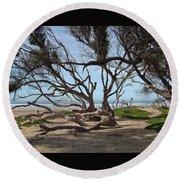 Tangle Of California Trees Round Beach Towel