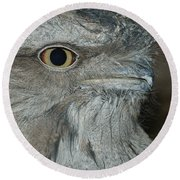 Tawny Frogmouth Round Beach Towel