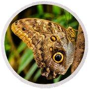 Tawny Owl Butterfly Round Beach Towel