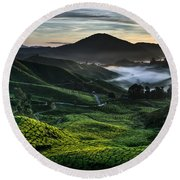 Tea Plantation At Dawn Round Beach Towel
