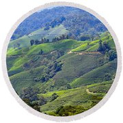 Tea Plantation In The Cameron Highlands Malaysia Round Beach Towel