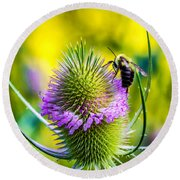 Teasel And Bee Round Beach Towel