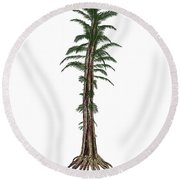 Tempskya Prehistoric Tree-like Fern Round Beach Towel