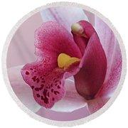 Temptation - Pink Cymbidium Orchid Round Beach Towel