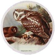 Tengmalms Owl Round Beach Towel