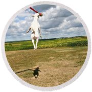 Terrier Ball Ballet Round Beach Towel