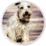 Terrier On Deck Round Beach Towel