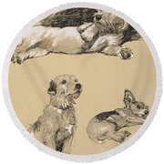 Terriers, 1930, Illustrations Round Beach Towel