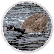 Territorial Canadian Goose Round Beach Towel