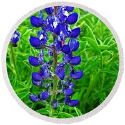 Texas Blue Bonnet Round Beach Towel