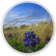 Texas Bluebonnet Center Of Attention Round Beach Towel
