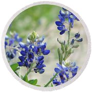 Texas Bluebonnets 01 Round Beach Towel