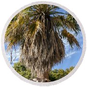 Texas Palm Round Beach Towel