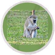 Texting Monkey Round Beach Towel