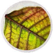 Textured Leaf Abstract Round Beach Towel