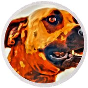 That Doggone Face Round Beach Towel