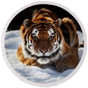 The Amur Tiger Round Beach Towel