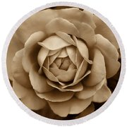 The Antique Rose Flower Round Beach Towel
