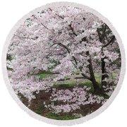 The Arboretum Cherry Blossoms Round Beach Towel