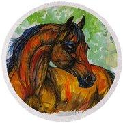 The Bay Arabian Horse 3 Round Beach Towel