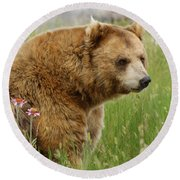 The Bear Dry Brushed Round Beach Towel
