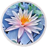 The Beautiful Lily Pond Round Beach Towel