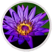 The Beauty Of A Water Liliy Round Beach Towel