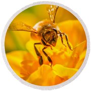 The Bee Gets Its Pollen Round Beach Towel