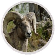 The Big Horn Round Beach Towel
