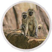 The Black-faced Vervet Monkey Round Beach Towel