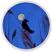 The Blackbird And The Moon Round Beach Towel