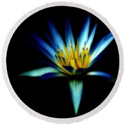 The Blue Lotus Of Egypt Round Beach Towel