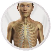 The Bones Within The Body Pre-adolescent Round Beach Towel
