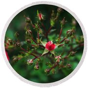 The Bud's For You Round Beach Towel