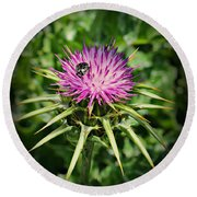 The Bug And The Thistle Round Beach Towel