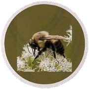 The Bumble Bee.. Round Beach Towel