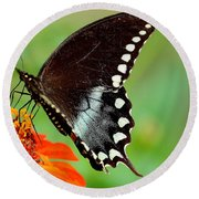 The Butterfly And The Zinnia Round Beach Towel