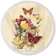 The Butterfly Book Round Beach Towel