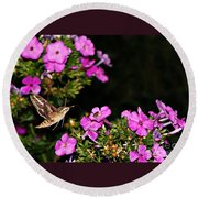 The Butterfly Garden At Night Round Beach Towel